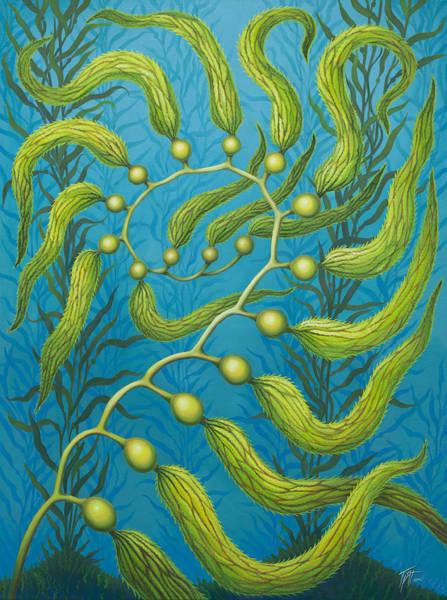 Seaweed Spiral Poster