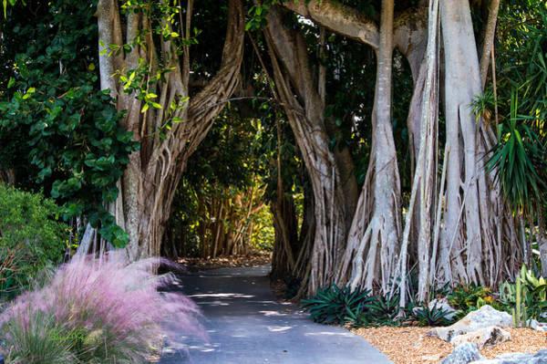 Selby Secret Garden 2 Poster