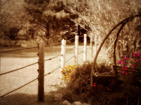 Sepia Garden Poster