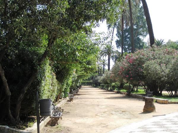 Seville Garden Pathway Iv Spain Poster