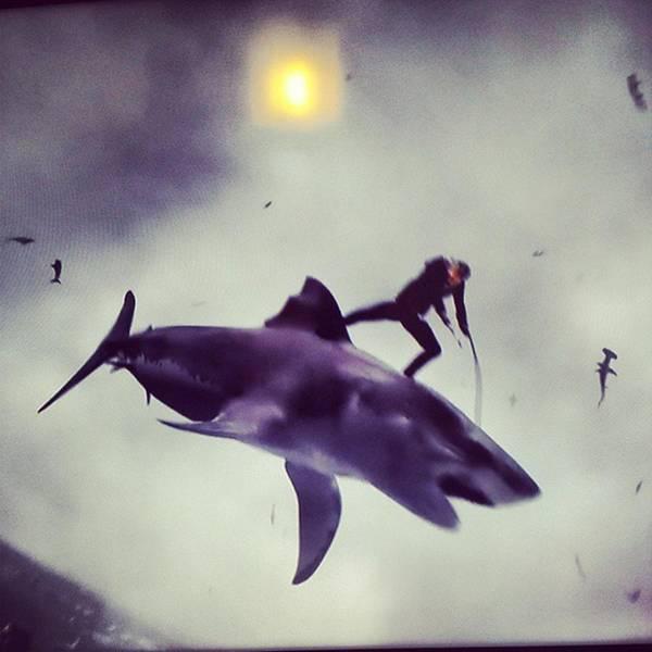 #sharknado #sharknado2 #bmovie #movie Poster
