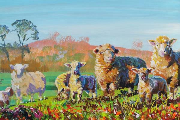 Sheep And Lambs In Devon Landscape Bright Colors Poster