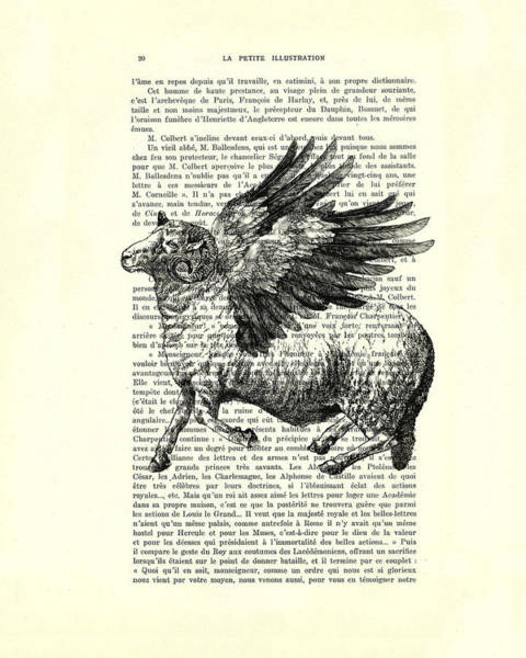 Sheep With Angel Wings Black And White  Poster