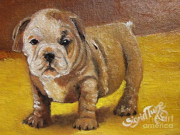 Chloe The   Flying Lamb Productions      Shortstop The English Bulldog Pup Poster