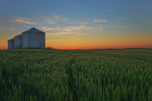Silos At Sunset Poster