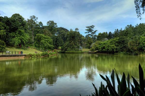 Singapore Botanical Gardens Poster