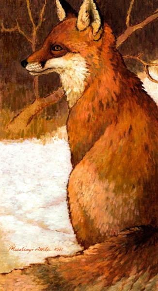 Sitting Fox Poster