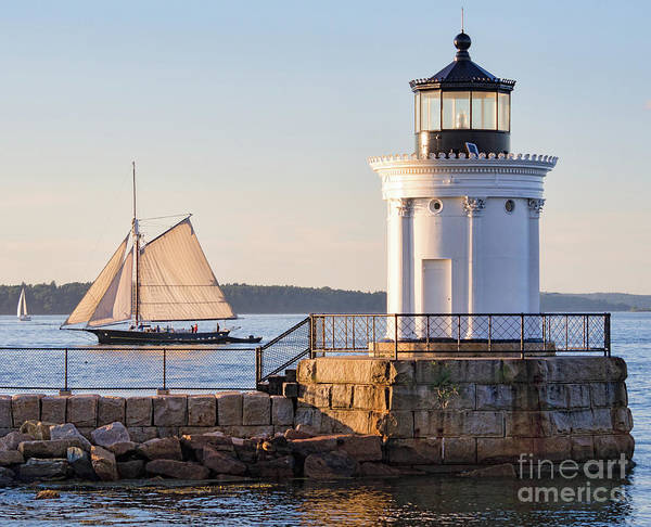Sloop And Lighthouse, South Portland, Maine  -56170 Poster