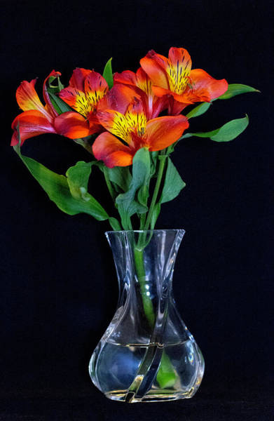 Small Bouquet Of Flowers Poster