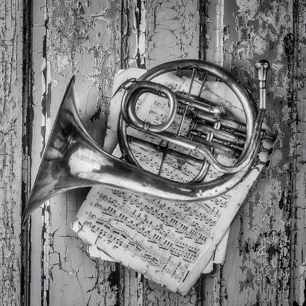 Small French Horn Black And White Poster