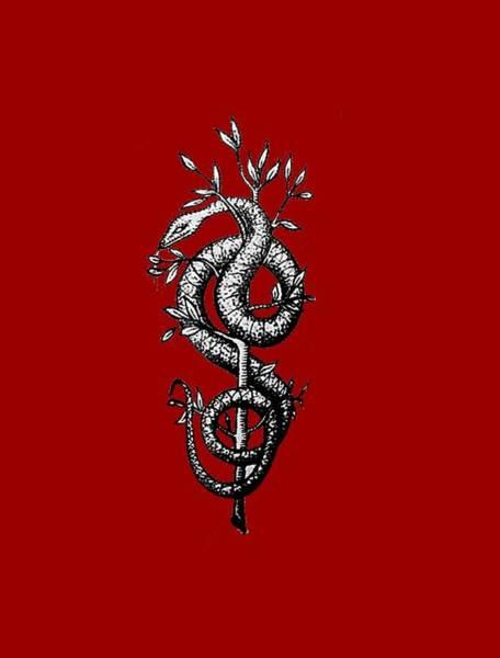 Snake Of Wisdom Poster