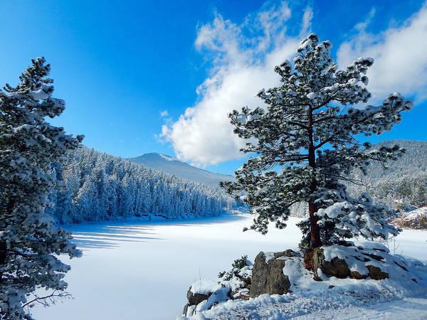 Snow At Beaver Brook Poster