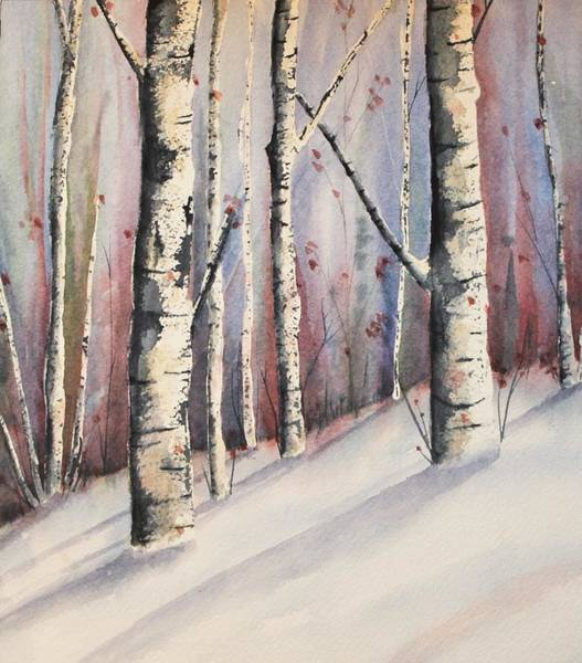 Snow In Birches Poster
