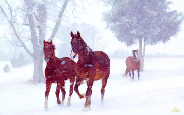 Poster featuring the photograph Snow Run by Sam Davis Johnson