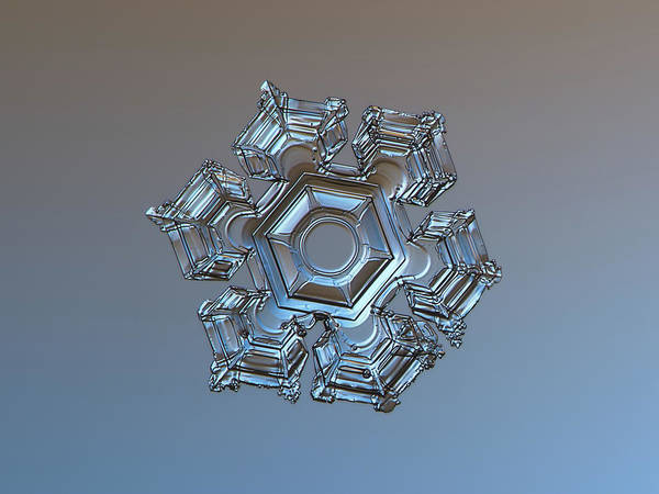 Snowflake Photo - Cold Metal Poster