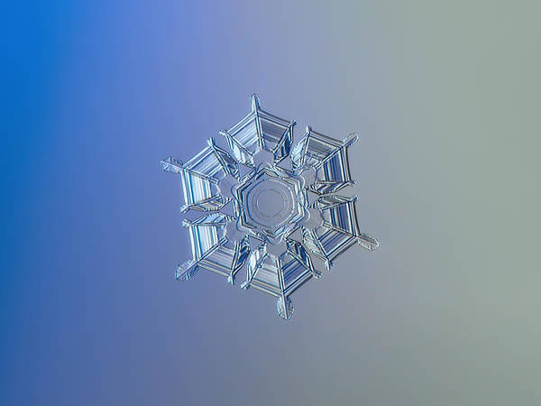 Snowflake Photo - Ice Relief Poster