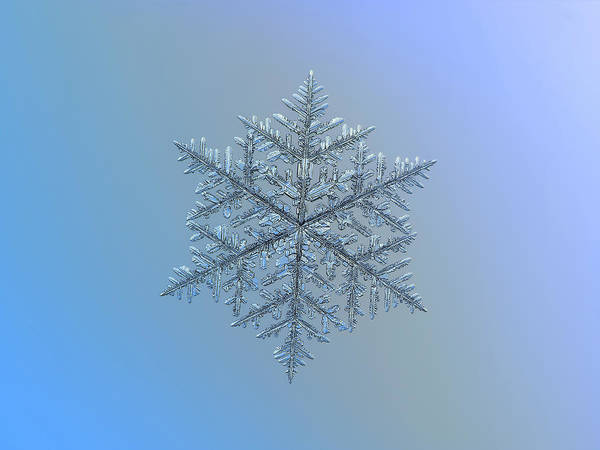 Snowflake Photo - Majestic Crystal Poster