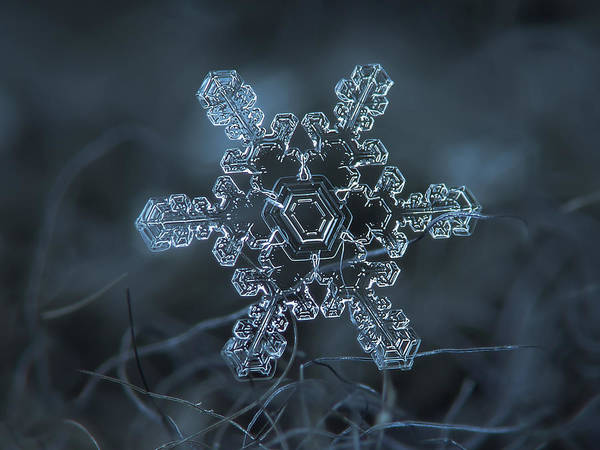 Snowflake Photo - Slight Asymmetry Poster