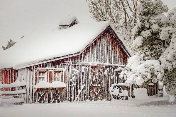 Snowy Country Barn Poster