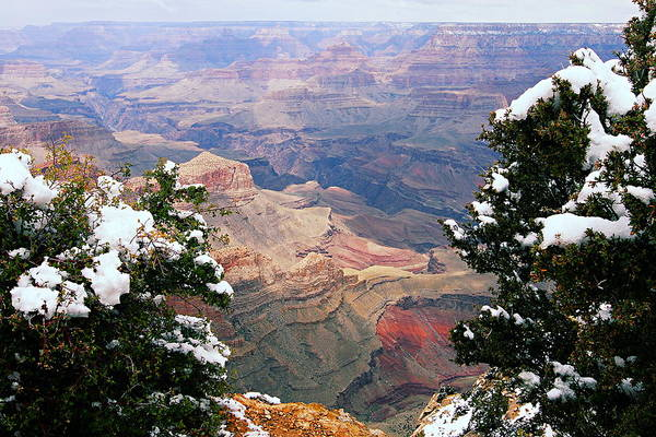 Snowy Dropoff - Grand Canyon Poster