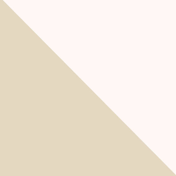 Soft Blush And Champagne Poster