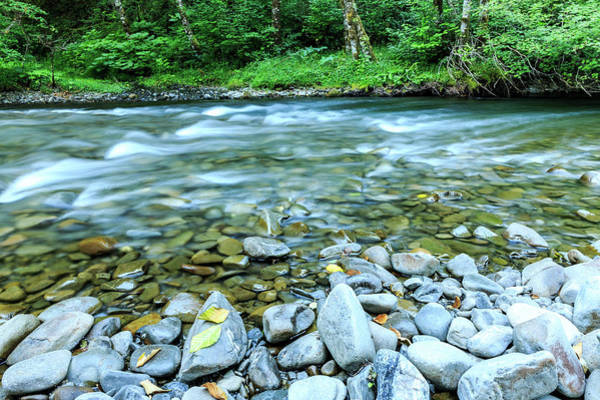 Sol Duc River In Summer Poster