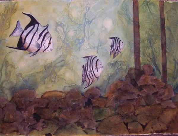 Spadefish In Fl Poster