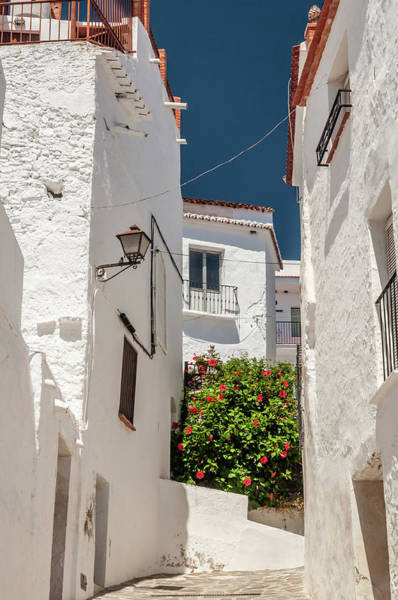 Spanish Street 2 Poster