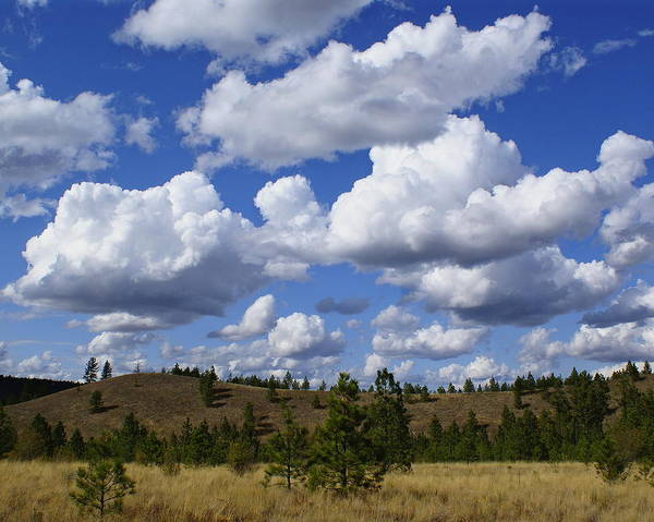 Spokane Cloudscape Poster