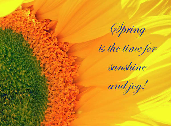 Spring Is The Time Poster