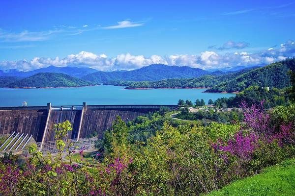 Springtime At Shasta Lake Dam Poster