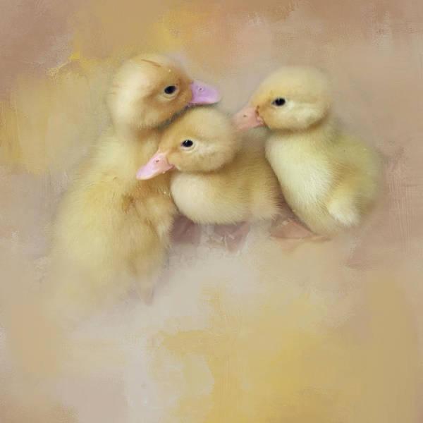 Springtime Babies Poster