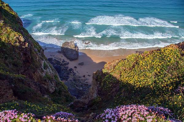 Springtime In Cornwall Poster