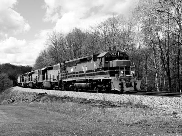 Sprintime Train In Black And White Poster