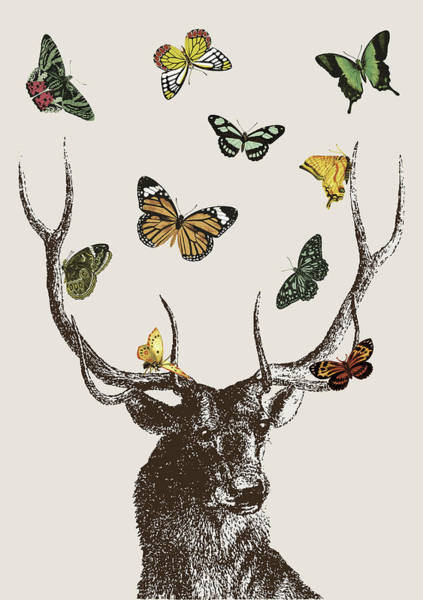 Stag And Butterflies Poster