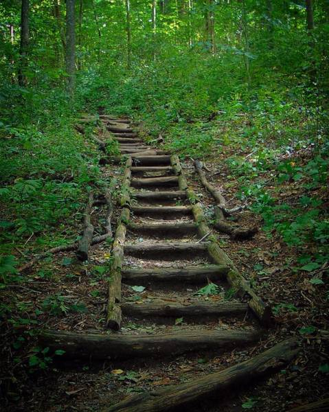 Stairway At Unicoi Gap On The At Poster