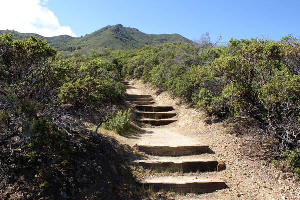 Stairway To Heaven On Mt Tamalpais Poster