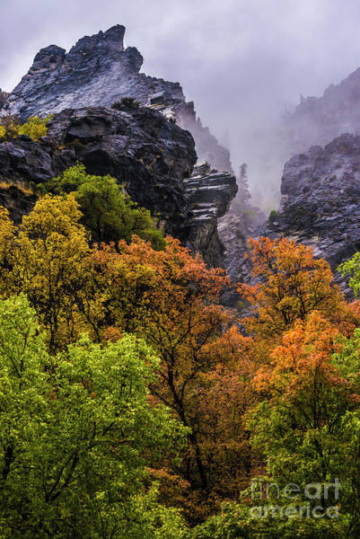 Stormy American Fork Canyon - Wasatch - Utah Poster