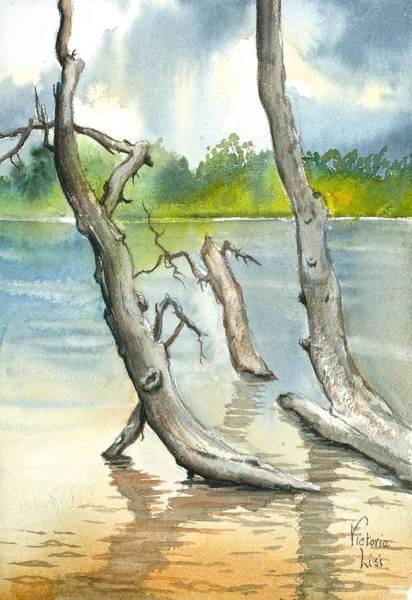 Submerged Cottonwood Poster
