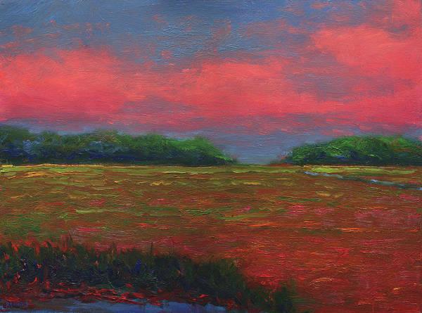 Summer Wetlands - Outlet Poster