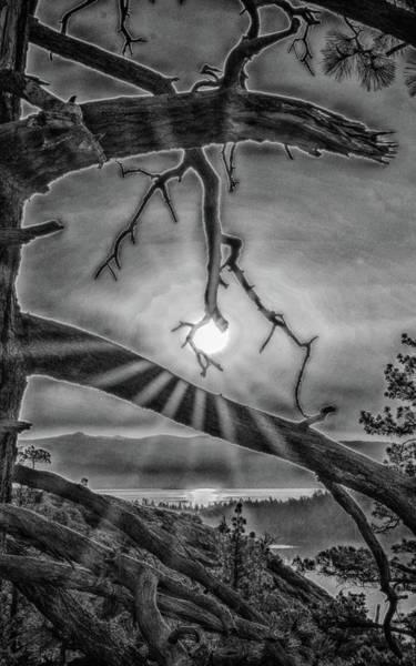 Sun Ornament - Black And White Poster