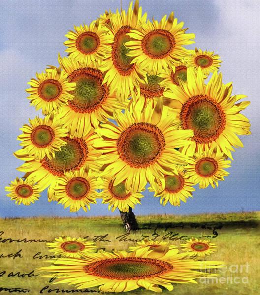 Sunflower Tree Poster