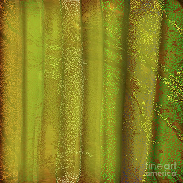 Sunlit Fall Forest Poster