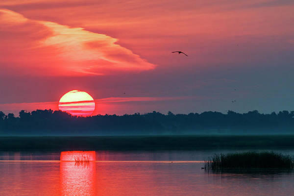 Poster featuring the photograph Sunrise At Cheyenne Bottoms 03 by Rob Graham