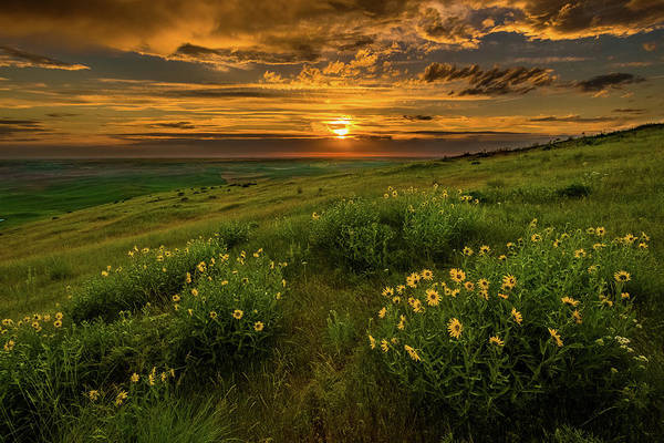 Sunset At Steptoe Butte Poster