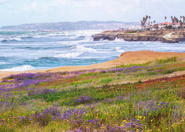 Sunset Cliffs In Spring Poster