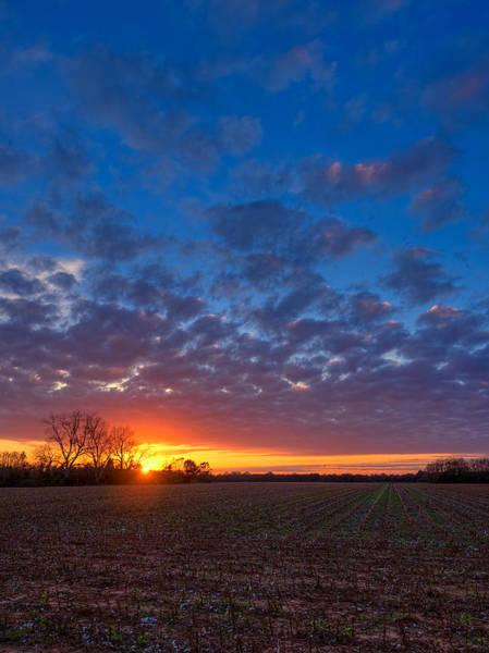 Sunset Field Poster
