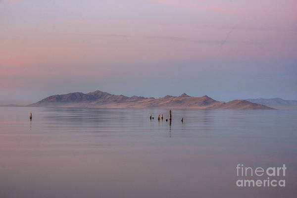 Sunset On Antelope Island Poster
