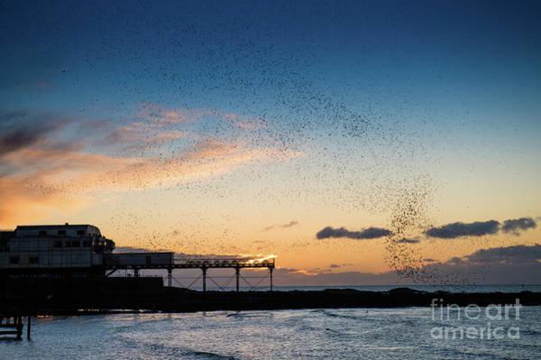 Sunset Over Aberystwyth Pier Poster