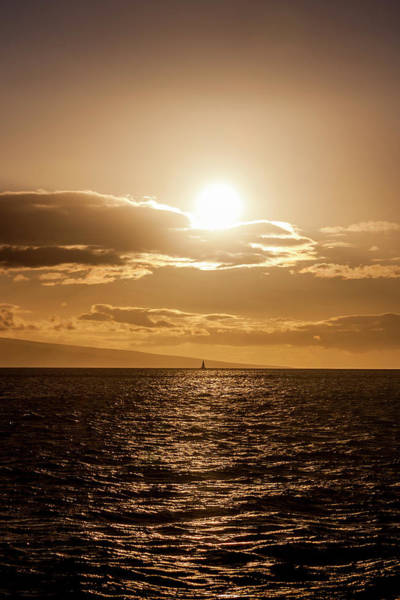 Sunset Sailboat Poster